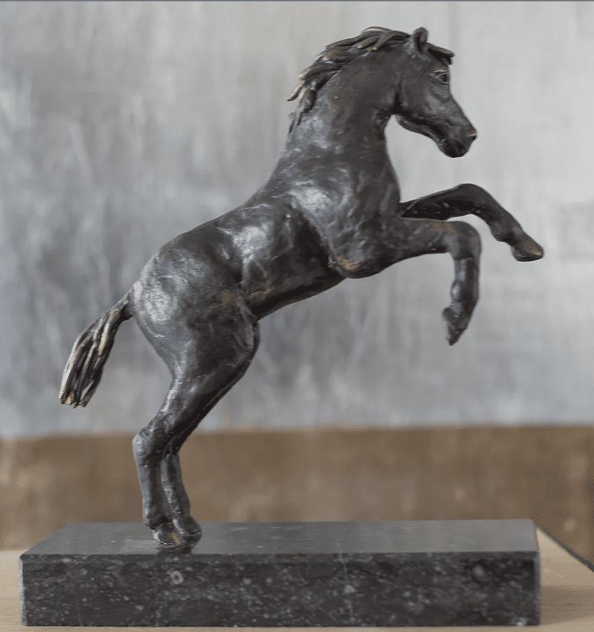 Paardje Steigerend