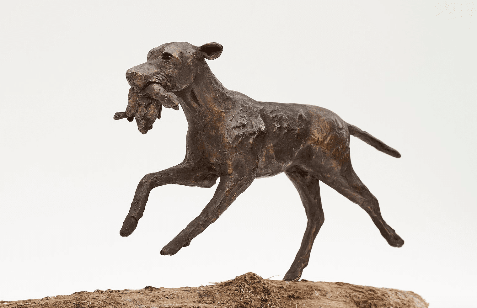 Jachthond met eend 'Hebbes' ( NIET OP VOORRAAD)