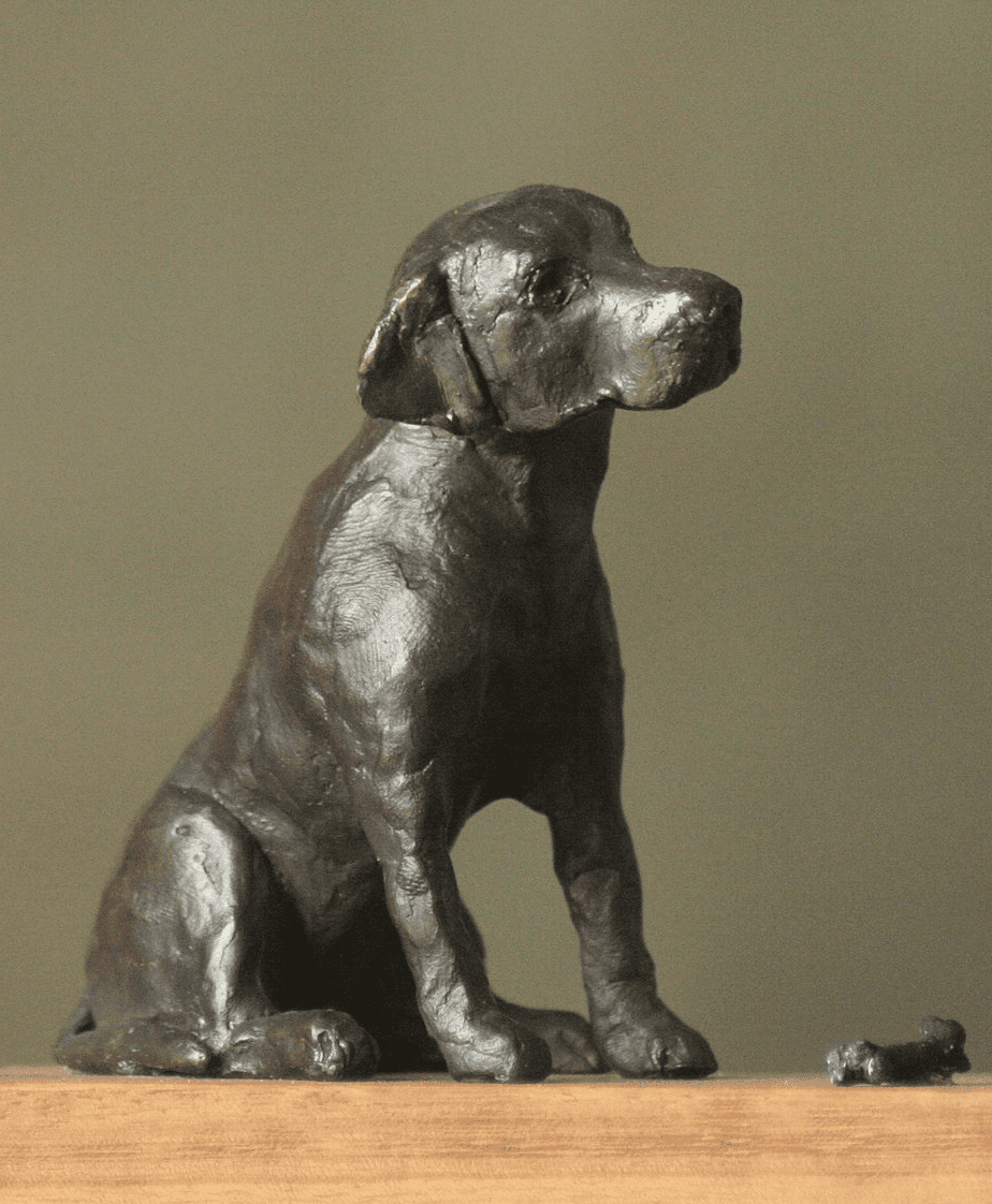 Labrador (met botje)